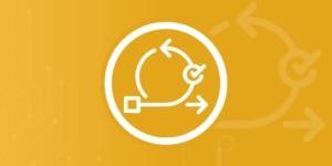 Beratung zu Agiler Software Entwicklung von Spirit in Projects