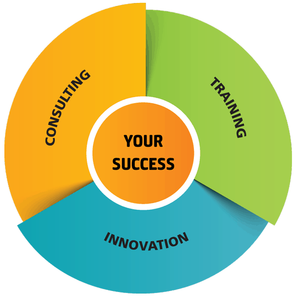 Spirit in Projects - Consulting, Training and Innovation for your Success